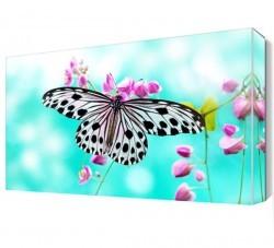 Dekorsevgisi - Çiçek ve Kelebek Canvas Tablo (1)