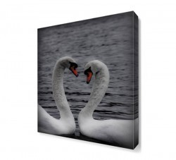 Dekorsevgisi - Kuğu Canvas Tablo (1)