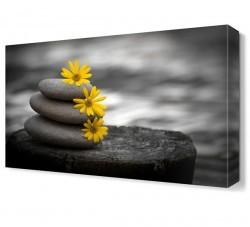 Dekorsevgisi - Taşlar Çiçek Canvas Tablo (1)
