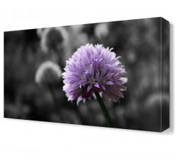 Dekorsevgisi - Mor Çiçek9 Tablosu (1)