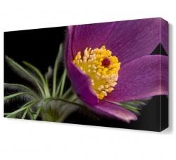 Dekorsevgisi - Mor Çiçek7 Tablosu (1)