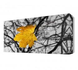 Sarı Yaprak Canvas Tablo - Thumbnail