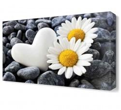 Dekorsevgisi - Taş Kalp ve Papatyalar Tablosu (1)