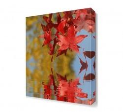 Dekorsevgisi - Suya Dökülen Yapraklar Canvas Tablo (1)