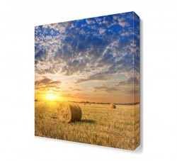 Dekorsevgisi - Tarla ve Güneş Manzarası Canvas Tablo (1)