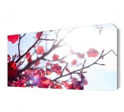 Dekorsevgisi - Daldaki Kırmızı Yapraklar Canvas Tablo (1)