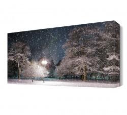 Dekorsevgisi - Kar Taneleri Manzarası Canvas Tablo (1)