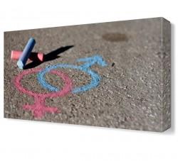 Cinsiyet Ayrım Canvas Tablo - Thumbnail