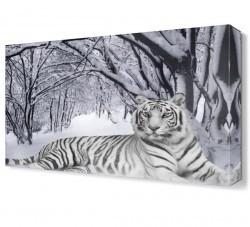 Dekorsevgisi - Beyaz Kaplan ve Kar Canvas Tablo (1)