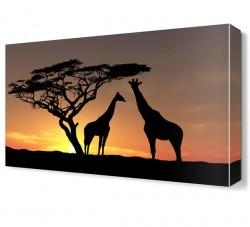 Dekorsevgisi - Zürafa Ailesi Canvas Tablo (1)