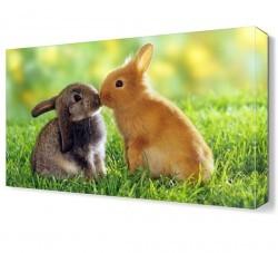 Dekorsevgisi - Tavşanların Aşkı Canvas Tablo (1)