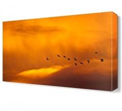 Dekorsevgisi - Kuşlar Canvas Tablo (1)