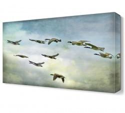 Dekorsevgisi - Göç Eden Ördekler2 Canvas Tablo (1)