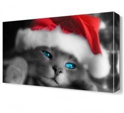 Dekorsevgisi - Noel Şapkalı Kedi Canvas Tablo (1)