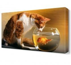 Dekorsevgisi - Kedi ve Fanustaki Balık Canvas Tablo (1)
