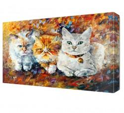 Üç Kedi Canvas Tablo - Thumbnail