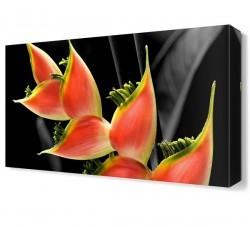 Dekorsevgisi - Farklı Çiçek Canvas Tablo (1)