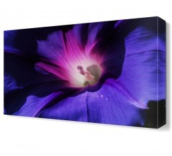 Dekorsevgisi - Mor Işıklı Çiçek Canvas Tablo (1)