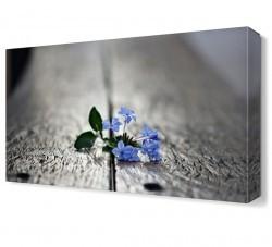 Dekorsevgisi - Banktaki Küçük Çiçek Canvas Tablo (1)