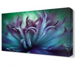 Dekorsevgisi - Mor Çiçek (1)