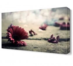 Dekorsevgisi - Yerdeki Çiçekler Tablosu (1)
