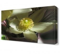 Dekorsevgisi - Beyaz Yapraklı Çiçek Tablosu (1)