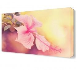 Dekorsevgisi - Pembe Çiçek3 Tablosu (1)