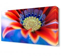 Dekorsevgisi - Kırmızı Renkli Çiçek Tablosu (1)