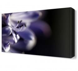 Dekorsevgisi - Mor Çiçek2 Tablosu (1)