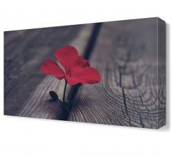 Dekorsevgisi - Kırmızı Çiçek3 Tablosu (1)