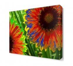 Dekorsevgisi - Gökkuşağı Çiçeği Tablosu (1)
