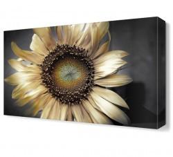 Dekorsevgisi - Beyaz Ay Çiçeği Tablosu (1)