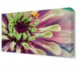 Dekorsevgisi - Mor Çiçek3 Tablosu (1)