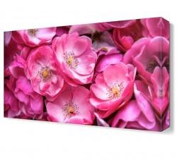 Dekorsevgisi - Pembe Çiçek Tablosu (1)