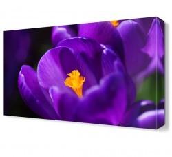 Dekorsevgisi - Mor Çiçek4 Tablosu (1)