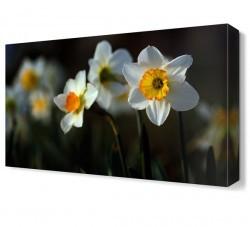 Dekorsevgisi - Güneşe Dönmüş Çiçekler Tablosu (1)