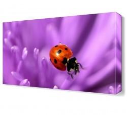 Dekorsevgisi - Uğur Böceği ve Mor Çiçek Tablosu (1)