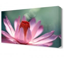 Dekorsevgisi - Tomurcuklu Pembe Çiçek Tablosu (1)