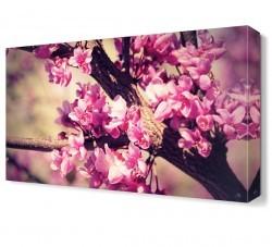 Dekorsevgisi - Ağaç Çiçeği Tablosu (1)