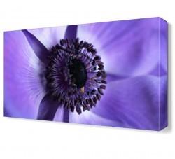 Dekorsevgisi - Mor Çiçek8 Tablosu (1)