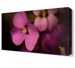 Dekorsevgisi - Pembe Çiçek2 Tablosu (1)