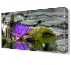 Dekorsevgisi - Su Çiçeği2 Tablosu (1)