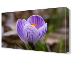 Dekorsevgisi - Mor Çiçekler Tablosu (1)