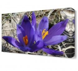 Dekorsevgisi - Çiçek Tablosu (1)