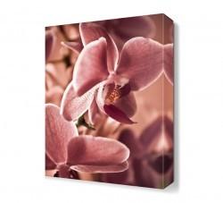 Dekorsevgisi - Çiçek Yaprakları Tablosu (1)