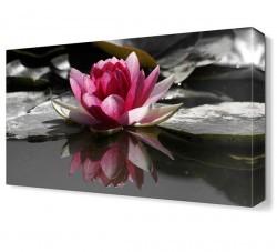 Dekorsevgisi - Sudaki Çiçek Tablosu (1)