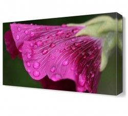 Dekorsevgisi - Mor Çiçek11 Tablosu (1)