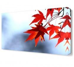 Dekorsevgisi - Kırmızı Yapraklar Tablosu (1)