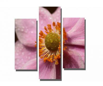 3 Parçalı Pembe Çiçek Tablosu